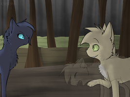 Bluestar and Thrushpelt by saeshells