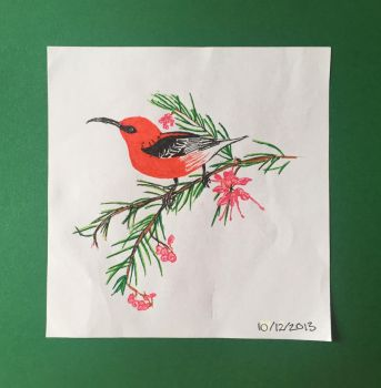 Bird - Felt tip pen practice sketch by Polynesiangirl