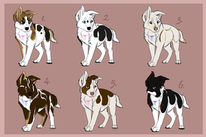 Layla X Adoth litter {Closed} by DancingOrbi