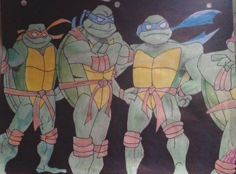 Teenage Mutant Ninja Turtles by aliciajamessss