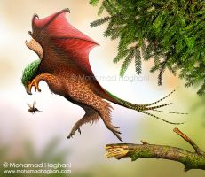Yi qi, a genus of scansoriopterygid dinosaurs by haghani