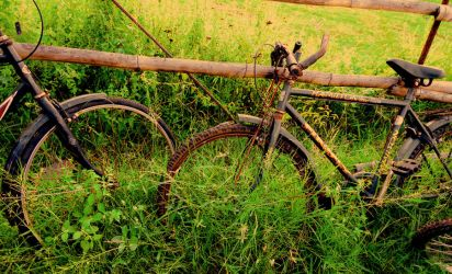 The Cycles by avikdey