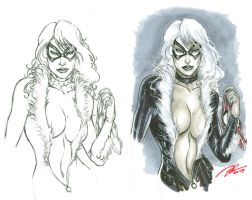 Black Cat - Copic test by BillDinh