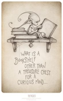 What is a bookshelf... by thePicSees