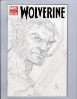 Wolvie Sketch Cover by MikeVanOrden