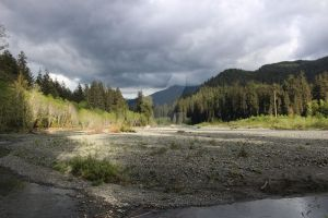 Hoh river 2 by seancfinnigan