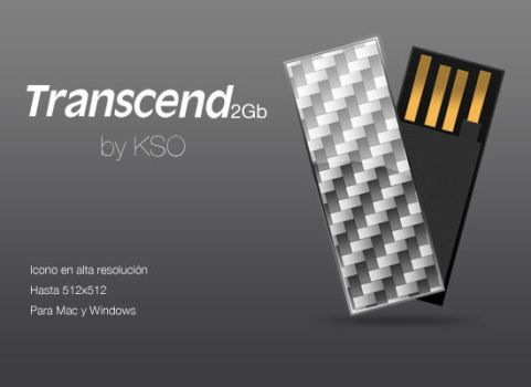 Transcend 2Gb by KSO