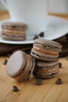 Double Chocolate Macarons by bittykate