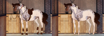 Adopt horse auction 5 [CLOSED] by Yanmi