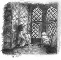 Harry and Hedwig by marykyart