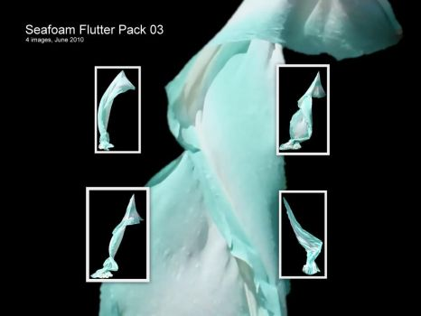 JBS Seafoam Flutter Pack 03 by geoectomy-stock