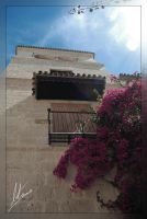 Picasso Museum by Morillas
