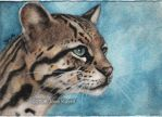 The Peaceful Ocelot by katat0nik