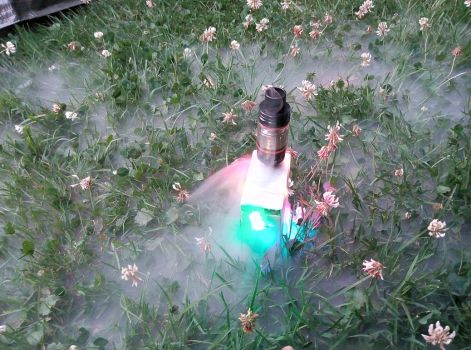 Photo: The VAPING - meadows by marderchen