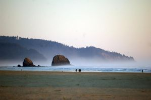 The rocks of Cannon beach by wetwilllie