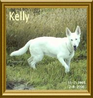 Our Big Dogful Friend Kelly... by Yeapsystar
