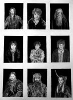 Fellowship: Portaits by AinuLaire