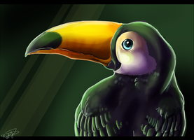 Toco Toucan :WIP: by Riivka