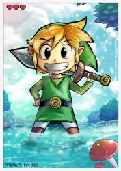The hero of hyrule by Blopa1987