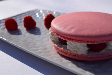 Giant raspberry macaron by TerraConceptualArt