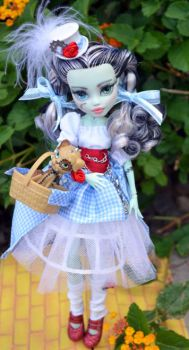 Steampunk Dorothy Ooak doll by DiamanteMorte