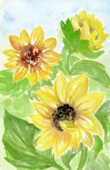 Sunflowers by Marsie-HST