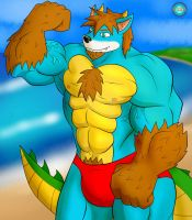 Gift - Rikuoxas on the Beach by B12A