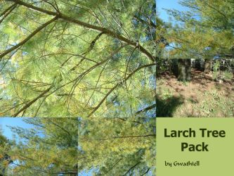Larch Tree Pack by Gwathiell