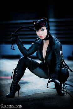 Catwoman - 02 by shiroang