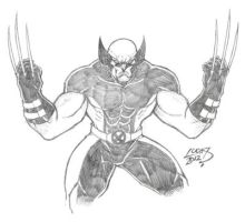 Wolverine 2012 by LucasAckerman