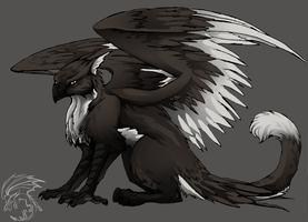 Random Gryph by eagle-flyte