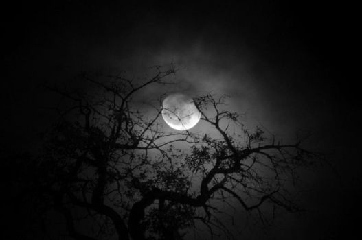 The Moon by symyx
