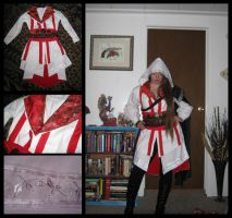 Assassin's Creed costume I by TheCrimsonCrow