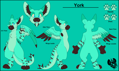 York's Ref by captainrex911