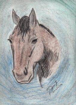 horse sketch by zkira1