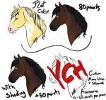 Equine Headshot YCHs -OPEN-  PAY ON MAIN ACCOUNT by TheAdoptArtist