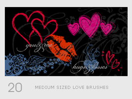 Medium Sized Love Brushes by diebutterfliege