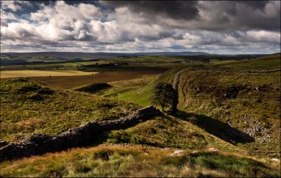 Sycamore Gap by LordLJCornellPhotos