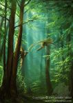 Our Forests by Nambroth