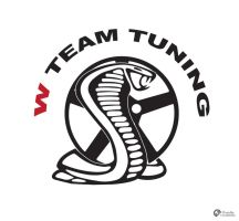 W Team Tuning Logo by Dredmix