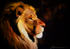 The lion 3 by Miracat