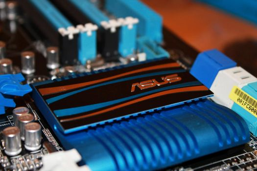 Asus P8Z68 Motherboard by rlcamp