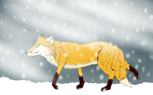 Wander in the snow by Vuele