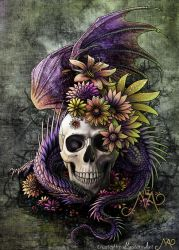 Dragon and flowery skull by Sunima