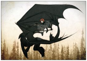 DYD: Toothless and Hiccup by Fandom-Person