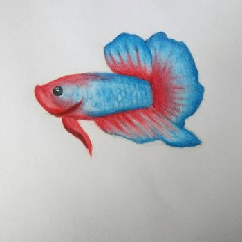Another betta fish by MangoSnek
