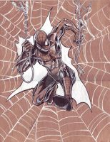 6-2017 Brown Spidey by hdub7