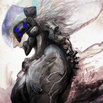 Raiden by changcc