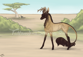 Lorean | Stag | A Windborne Nomad by Tattered-Dreams