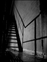 Shadow Steps, Part Two by bdusen